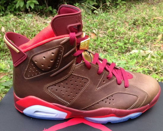 Air Jordan Retro 6 Red Cigar Netherlands